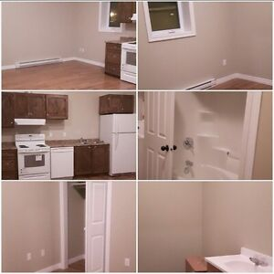 one bedroom and one bedroom  accessible apartments(NEW)