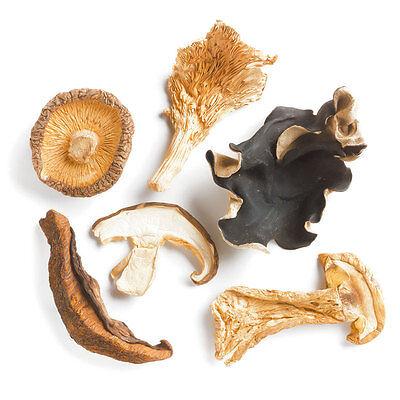 Dried Forest Blend Mushrooms - 1oz Kraft Bag