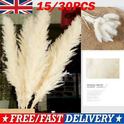 Home Decoration - 15/30x Artificial Dried Pampas Grass Phragmites Communis Bunch Home Decor White
