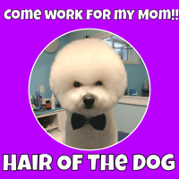 DOG GROOMER NEEDED FOR BUSY NW SALON!!