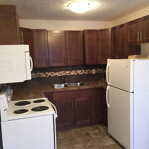 Renovated 1 Bedroom Suite - Available February 15, 2017
