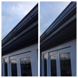 Mount Pleasant Gutter Scrubbing & Window Cleaning (8 Years EXP)