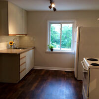 Newly renovated one bedroom