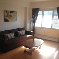 2 1/2 Apartment for Rent 5 Min Walk to McGill - GREAT LOCATION