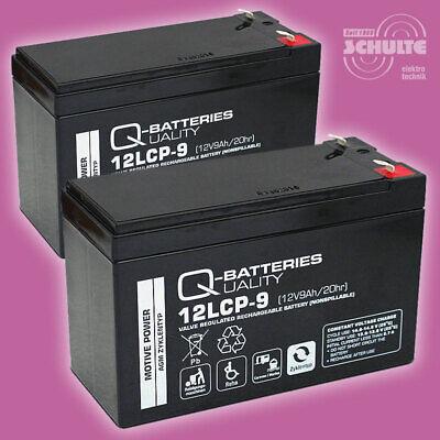Ersatz-Akkus Batterien für Elektro Scooter Razor E300, 2 x 12V 9Ah Blei AGM