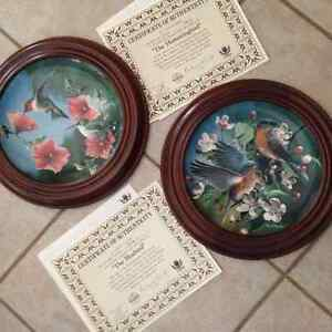 Decorative plates with frames