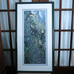 Art Picture Signed Numbered Toucan Rod Frederick The Lost World Kitchener / Waterloo Kitchener Area image 1