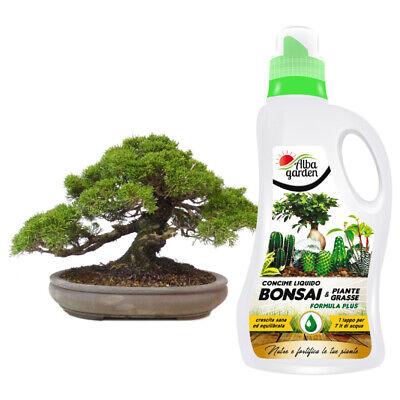 Abono Líquido Fertilizante Nutritivo Npk para Bonsai Plantas Grasse Cactus 1 Lt