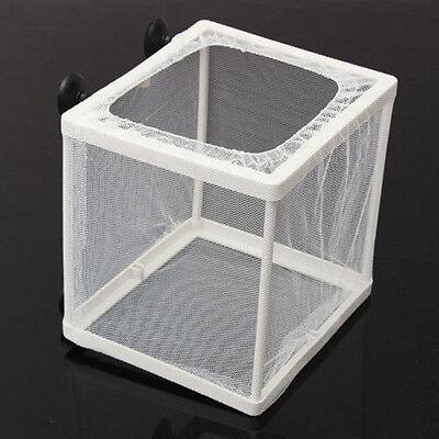 Aquarium Fish Tank Breeding Breeder Net Case Hospital Baby Box LY