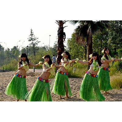 6pcs/Set Ladies Hawaiian Grass Skirt Hula Luau Party Dance Costume Fancy - Hawaiian Lady Costume