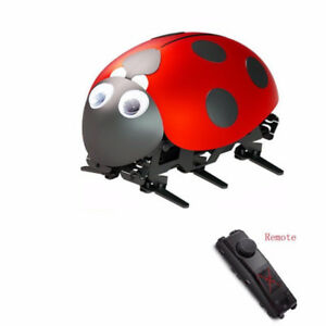 RC Lady Bug Intelligent Robot Kit  -  Lots of Fun