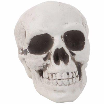 1Pc Plastic Human Skull Decor Prop Skeleton Head Halloween Coffee Bars Ornament - Plastic Skull Heads