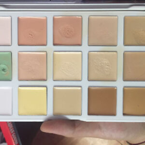 Barely used/ swatched Makeup for sale near finch/404