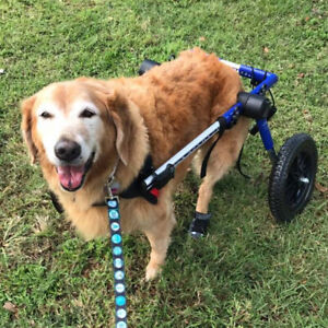 Dog Wheelchair - For Large Dogs 70-180 lbs - By Walkin' Wheels