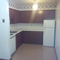 SPACIOUS 1 BEDROOM APARTMENT- CLOSE TO EVERYTHING