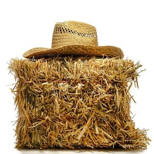 NEEDED! 2-3 LARGE ROUND/SQUARE STRAW BALES.