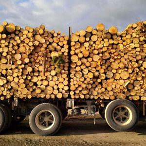 Camions pour transporter des billes de bois Lac-Saint-Jean Saguenay-Lac-Saint-Jean image 1