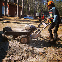 AFFORDABLE STUMP GRINDING...CALL GEE'S TREES