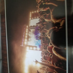 Looking for boots&hearts ticket genral admissions  $250