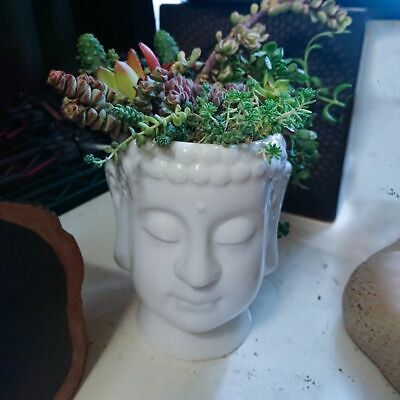 Buddha Head Pot White Ceramic Flower Planter for Succulents Plants Home Decor