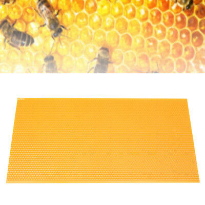 Yellow Plastic Honeycomb Foundation Bee Hive Nest Frames Sheet Beekeeping Us