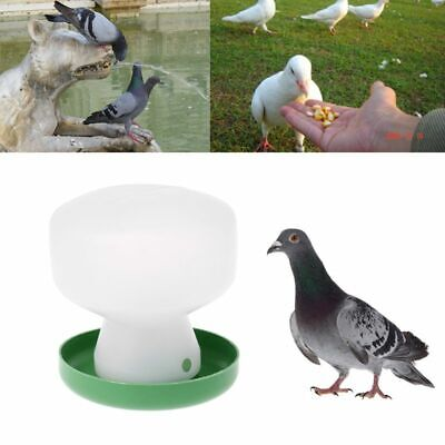Pigeon Feeder Chicken Drinking Bird Quail Poultry Automatic Drink Water Supply