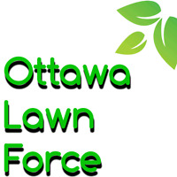 Core  Lawn Aeration  Get your free quote today!!