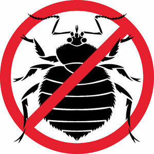 BRAND NEW Bed Bug Protectors Protect your Investment only $49 Kitchener / Waterloo Kitchener Area image 1