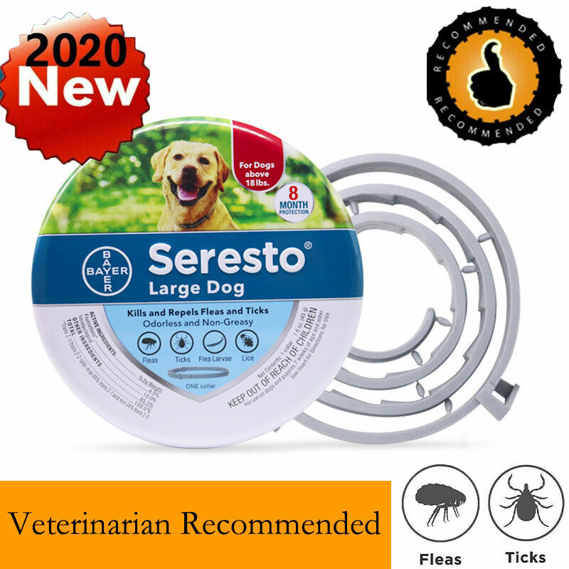Bayer For 8 Month Large Dog Over 18lbs Control Flea And Tick Collar US Fast Ship