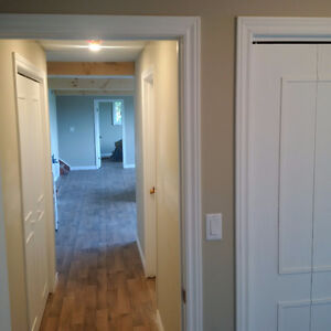 Basement Finishing & Garage Conversion Kawartha Lakes Peterborough Area image 1