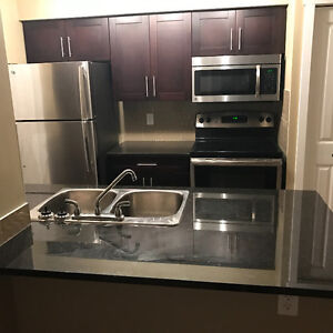 2 bedrooms 2 bathrooms with surface parking condo for rent