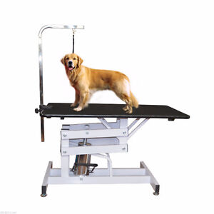 zlift hydraulic pet grooming table hydraulic grooming table