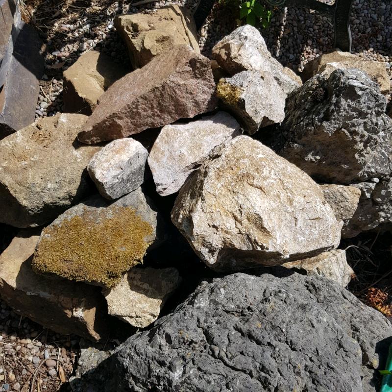 Free   Large Garden Rocks | In Brighton, East Sussex | Gumtree