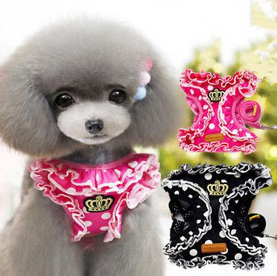Kleine Hundegeschirr & Leine Führen Set Süße Haustier Katze Kragen für Chihuahua (Süßes Geschirr Für Hunde)