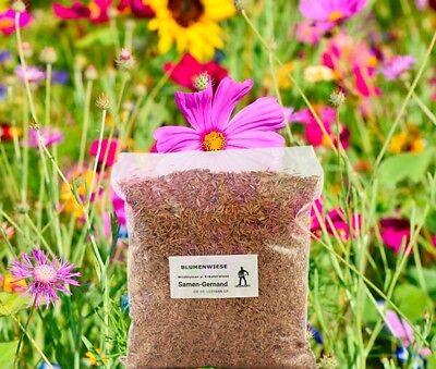 Blumenwiese Wildblumenwiese Samen 1 kg Frische Saat für ca. 100 m²