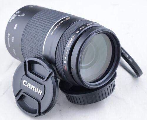 Canon EF 75-300mm f/4-5.6 III USM lens for EOS 5D 6D 7D 70D 80D T7i T6i T5i 90D