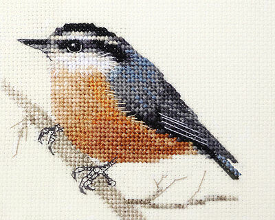 NUTHATCH ~ Garden Bird ~ Full counted cross stitch kit with all materials