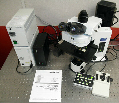 Olympus Bx61 Microscope Dic Fluorescence Phase Contrast Ludl Lep Nih Research
