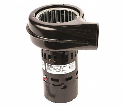 3000 Rpm Centrifugal Blower 115230 Volts Fasco B23617