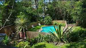 Room for rent large home $150pw. 2 rooms available Kotara Newcastle Area Preview