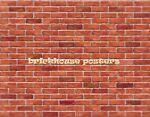 Brickhouse Posters