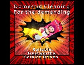 DOMESTIC CLEANING-Reliable. Trustworthy. Service Driven. ( Cleaner / Housekeeper )