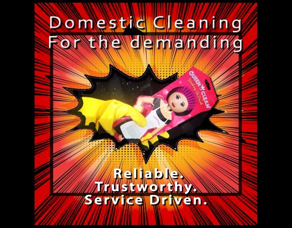 DOMESTIC CLEANING-Reliable. Trustworthy. Service Driven. (