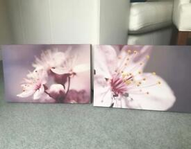 2 canvases