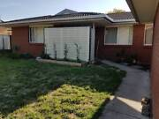 LF housemate to share 4 bedroom house in Palmerston ACT Crace Gungahlin Area Preview