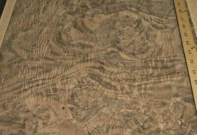 Walnut Burl Wood Veneer 18 X 15 Raw Veneer No Back Aaa Quality Grade 142