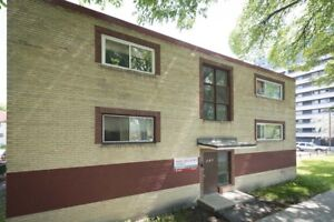 241 Young, Bachelor Apartment Available Immediately