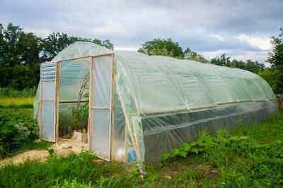 UV4 Gewächshausfolie Gartenfolie Tunnelfolie Tomatenhaus in 6m Breite