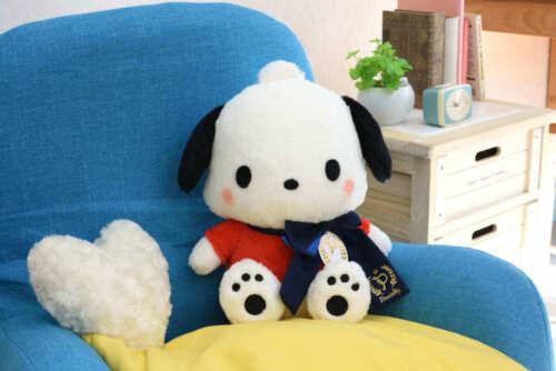 Sega Sanrio Pochacco Preciality Special Yurukawa DX 30cm Plush Doll SEGA1037658
