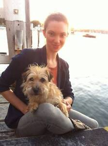 Experienced House & Pet Sitter Available (January 2017) Sydney City Inner Sydney Preview